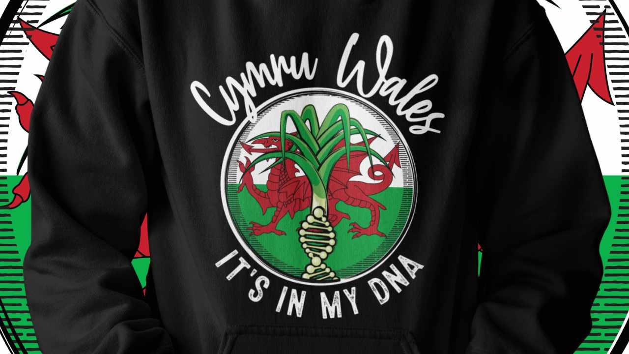 Wales - It's in my DNA hoodie